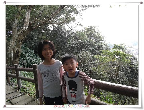 中和圓通寺登山步道7