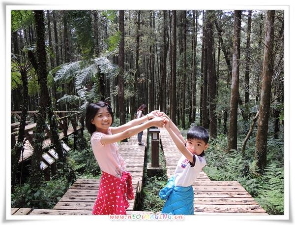 明池森林遊樂區[馬告生態公園]24