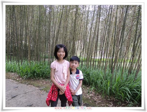 明池森林遊樂區[馬告生態公園]35