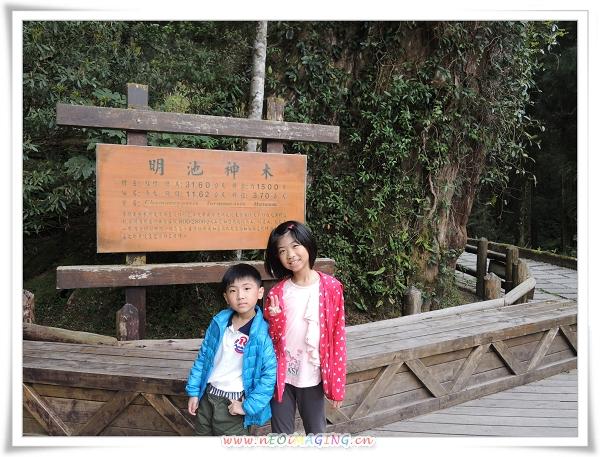 明池森林遊樂區[馬告生態公園]50