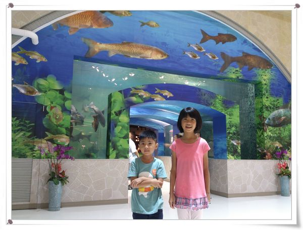 東山服務區_水漾魚隧道1
