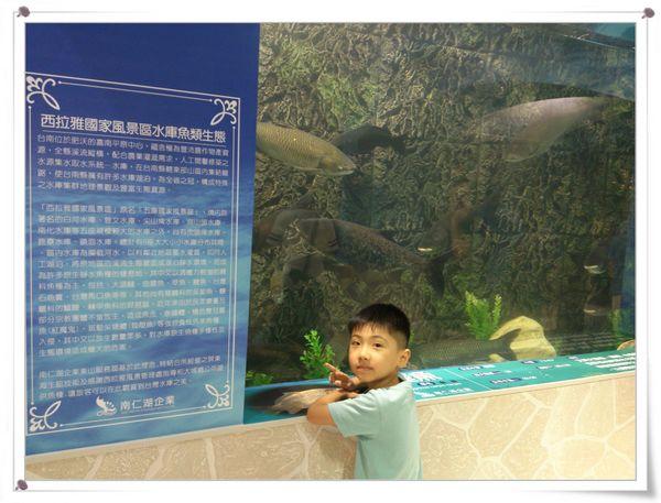 東山服務區_水漾魚隧道2