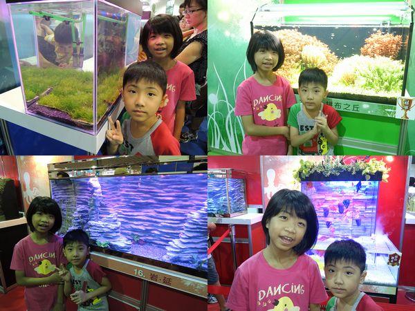 2013台灣觀賞魚博覽會[台北南港展覽館]15