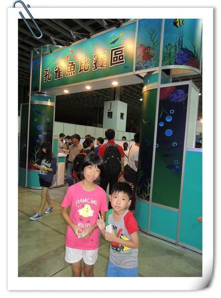 2013台灣觀賞魚博覽會[台北南港展覽館]23