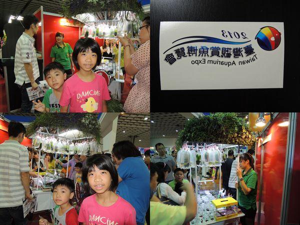 2013台灣觀賞魚博覽會[台北南港展覽館]24