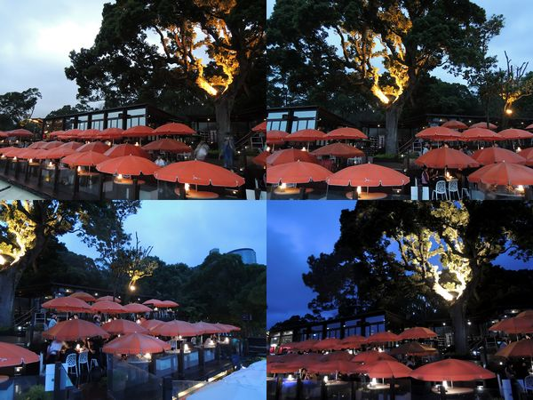 草山夜未眠景觀餐廳[陽明山夜景]12