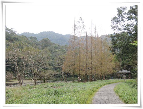 福山植物園[宜蘭員山]5