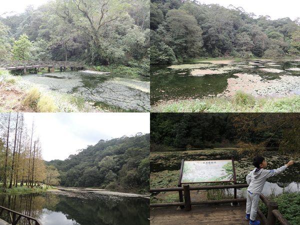 福山植物園[宜蘭員山]7