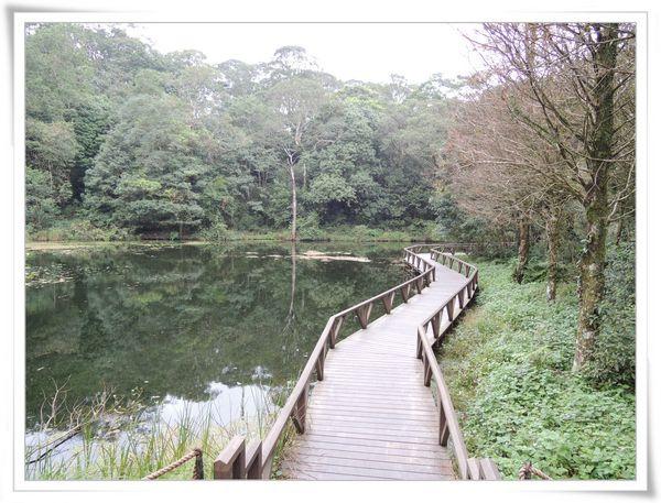 福山植物園[宜蘭員山]10