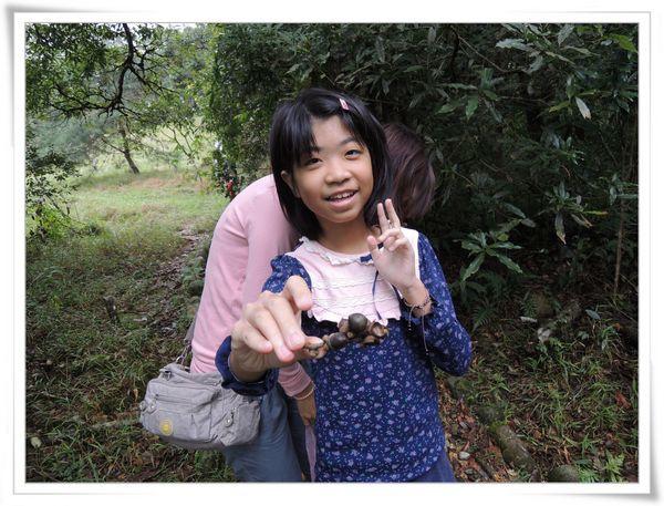 福山植物園[宜蘭員山]15