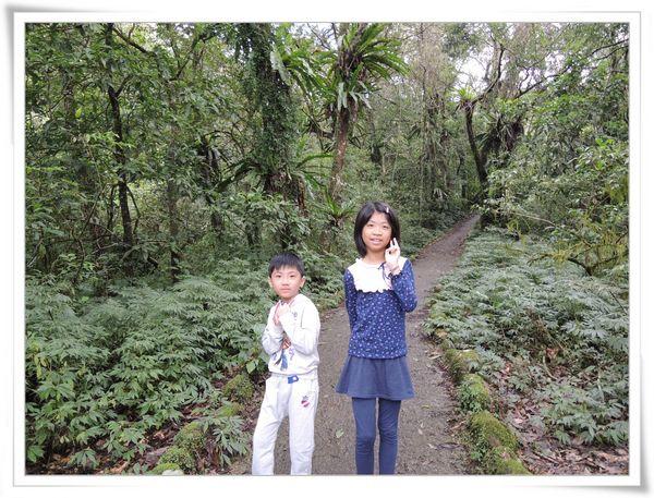 福山植物園[宜蘭員山]21