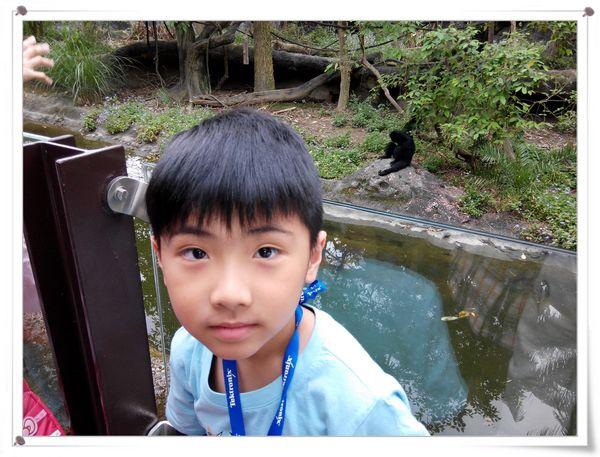 台北市立木柵動物園Taipei City Zoo2