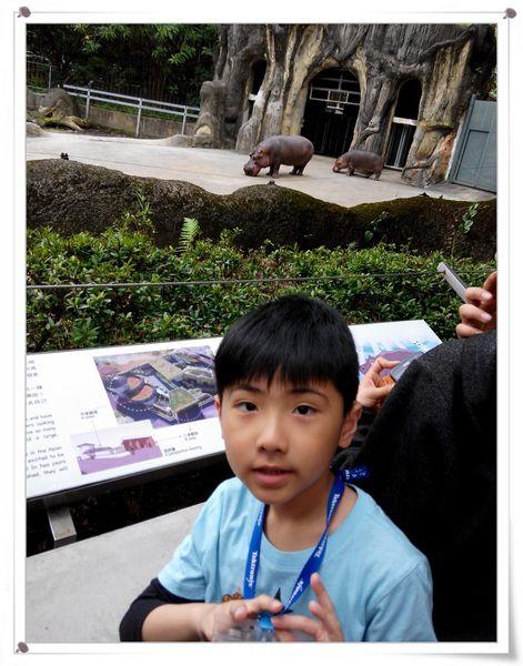 台北市立木柵動物園Taipei City Zoo4