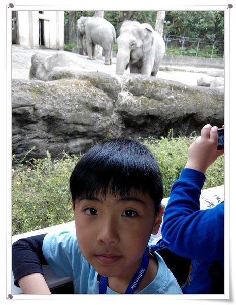 台北市立木柵動物園Taipei City Zoo5