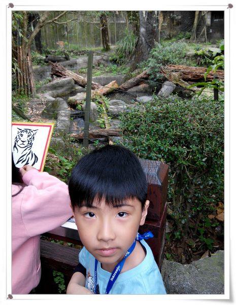 台北市立木柵動物園Taipei City Zoo6