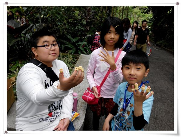 台北市立木柵動物園Taipei City Zoo9