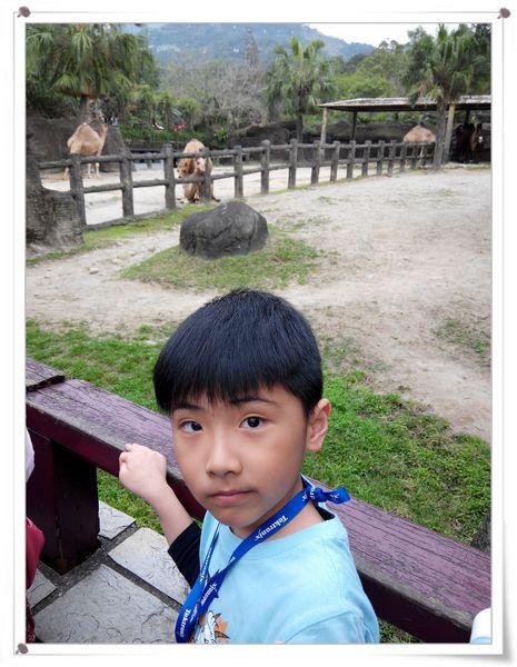 台北市立木柵動物園Taipei City Zoo11