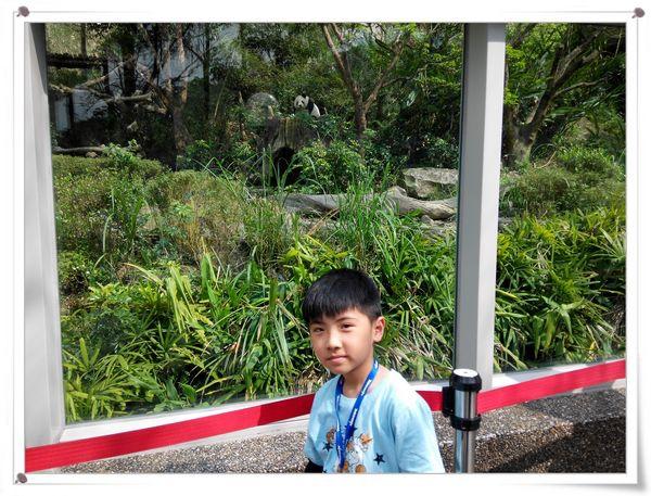 台北市立木柵動物園Taipei City Zoo14