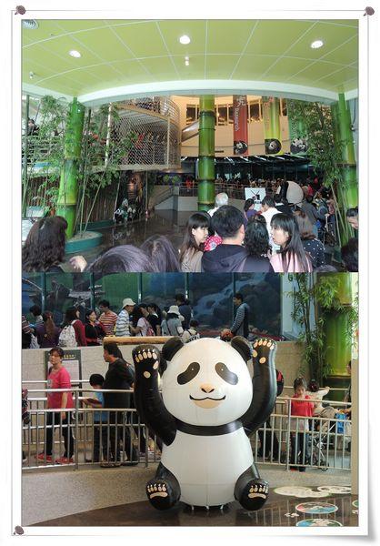 台北市立木柵動物園Taipei City Zoo17