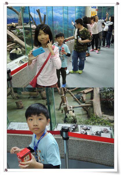 台北市立木柵動物園Taipei City Zoo23