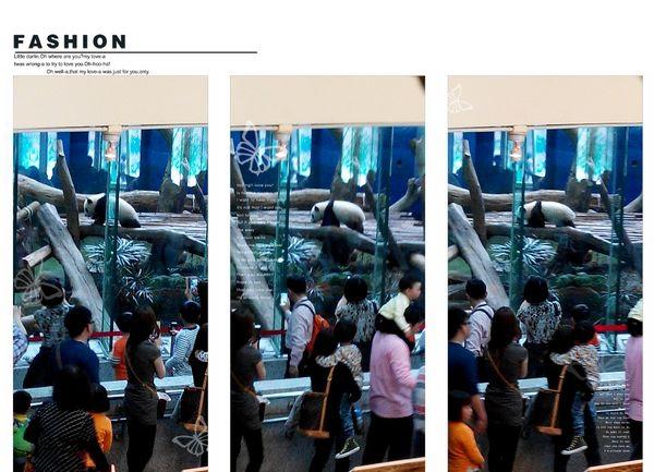 台北市立木柵動物園Taipei City Zoo26
