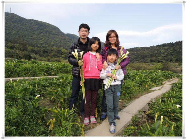 2014竹子湖海芋季[陽明山國家公園]12