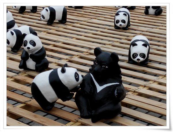 「1600貓熊世界之旅—台北」紙貓熊展[中正紀念堂]7