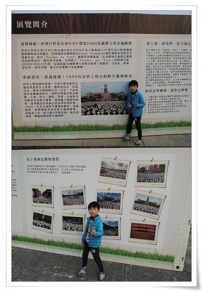 「1600貓熊世界之旅—台北」紙貓熊展[中正紀念堂]20