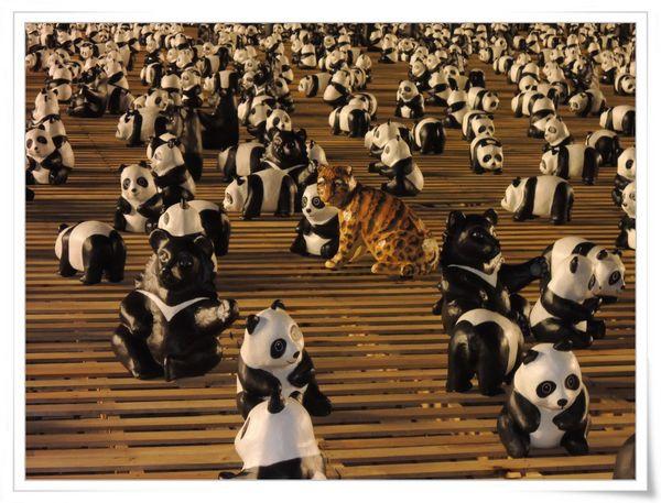 「1600貓熊世界之旅—台北」紙貓熊展[中正紀念堂]25