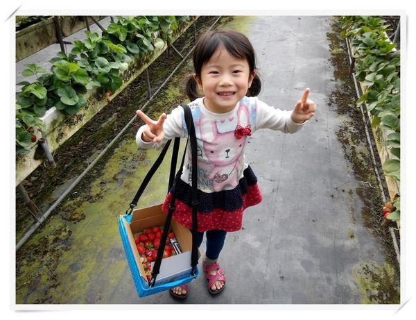 大安草莓園_大安生態教育農場[台南善化]14
