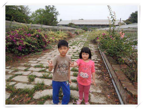 大安草莓園_大安生態教育農場[台南善化]18