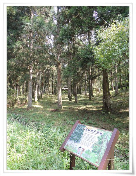 福山植物園&雙連埤生態教室[宜蘭員山]12