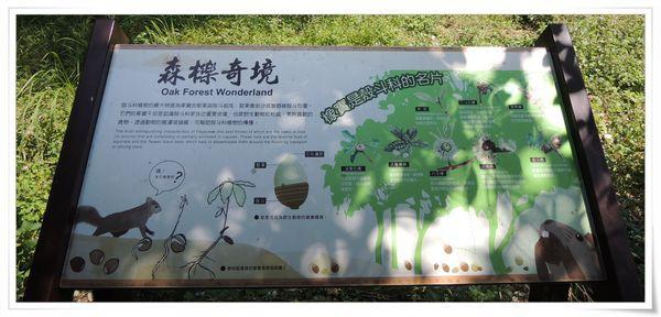 福山植物園&雙連埤生態教室[宜蘭員山]26