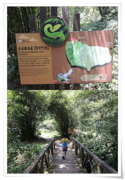 福山植物園&雙連埤生態教室[宜蘭員山]37