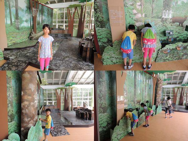 福山植物園&雙連埤生態教室[宜蘭員山]63