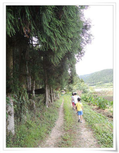 福山植物園&雙連埤生態教室[宜蘭員山]72