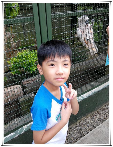 森林鳥花園[新竹新埔]30