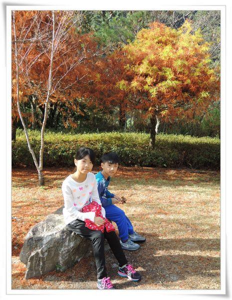 奧萬大國家森林遊樂區_Day 2[南投仁愛]32