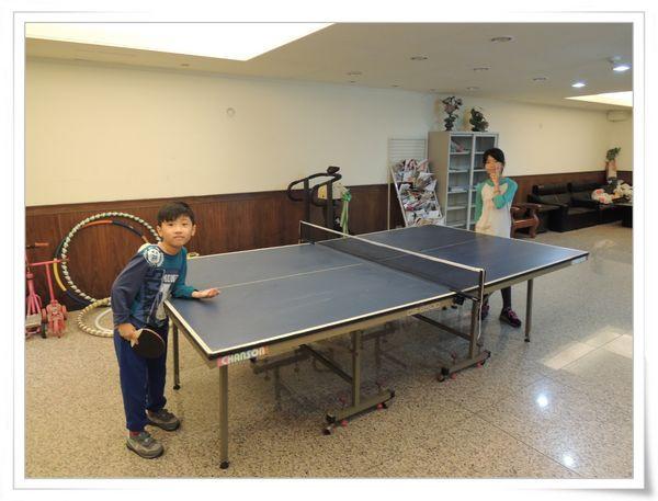 美獅龍MSL-3016乒乓球拍和Luwint LW-301乒乓球網架[淘寶台灣]6