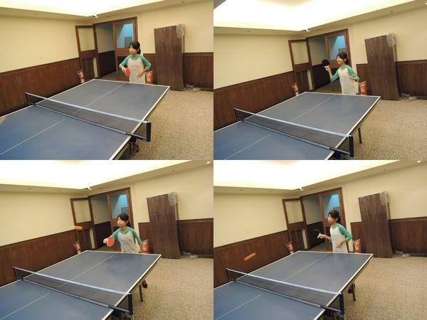美獅龍MSL-3016乒乓球拍和Luwint LW-301乒乓球網架[淘寶台灣]10