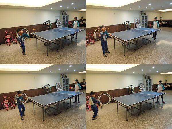 美獅龍MSL-3016乒乓球拍和Luwint LW-301乒乓球網架[淘寶台灣]11
