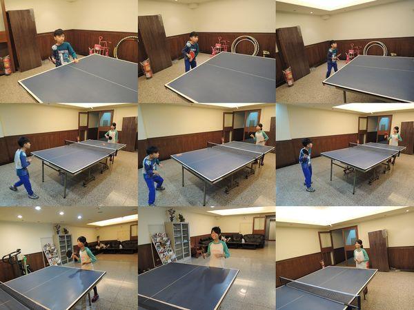 美獅龍MSL-3016乒乓球拍和Luwint LW-301乒乓球網架[淘寶台灣]12