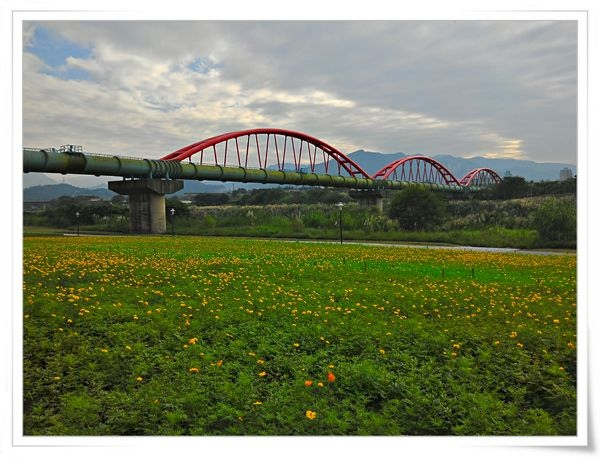 自行車之旅_綠光河岸公園_華中河濱公園_古亭河濱公園42