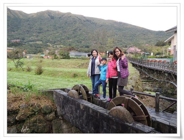 2015竹子湖海芋季[陽明山國家公園]3