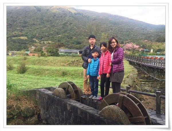 2015竹子湖海芋季[陽明山國家公園]4
