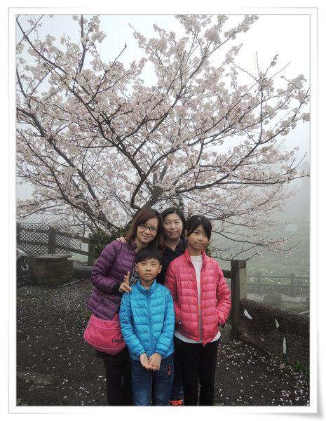 2015竹子湖海芋季[陽明山國家公園]10