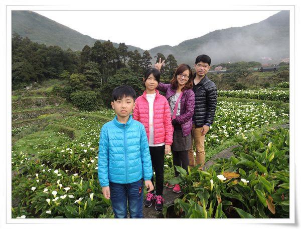 2015竹子湖海芋季[陽明山國家公園]16