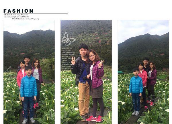 2015竹子湖海芋季[陽明山國家公園]28
