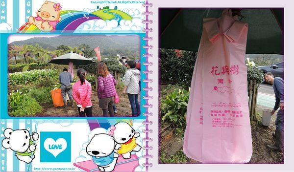 2015竹子湖海芋季[陽明山國家公園]32