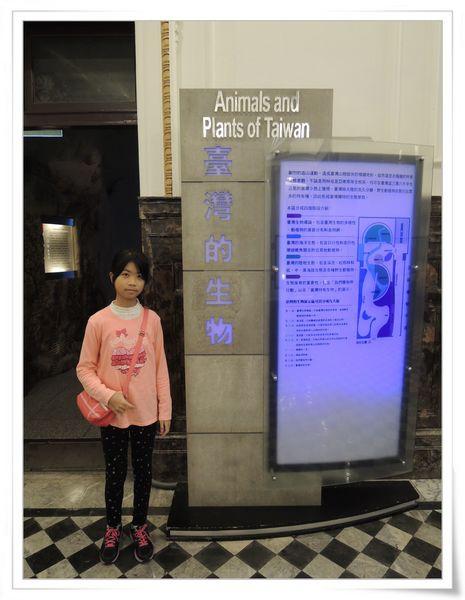 國立台灣博物館[台北市中正區]15